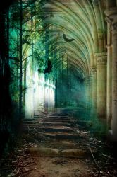 Enchanted passage by semiOZimatic