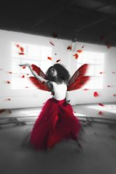 Red Winged Dancer by paraenesis