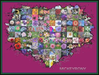 Heart of love for you all by mickeyrony