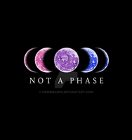 Not A Phase - BI Pride by PrideMarks