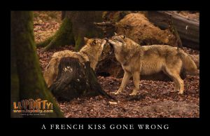 A French Kiss Gone Wrong by Lupinicious