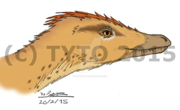Velociraptor mongoliensis portrait by Stuff-by-Tyto
