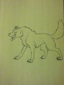 a wolf sketch by 01whitewolf