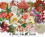 22 Flower Pngs By heykid by heeykiid
