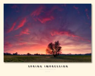 Spring Impression by VirtualWords