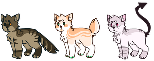 Dog Adoptables AUCTION [ CLOSED ] by TangerineAdopts