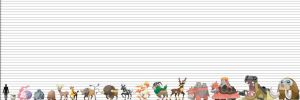 Pokemon Size Chart: Ungulates Quadrupeds