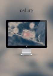 Nature 4 by Lukunder