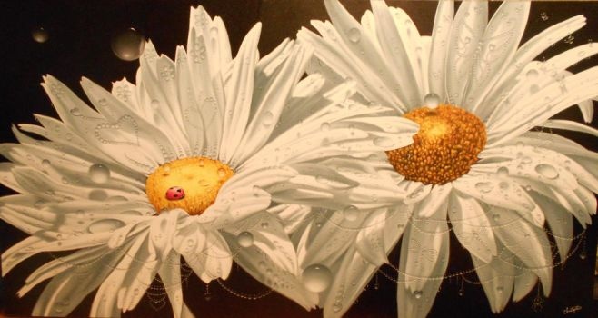 Shasta Daisies...Mother and child. by ChristopherPollari