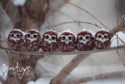 More Owlets! :) by Irentoys