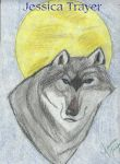 Wolf Moon by Shadow-Wolfen