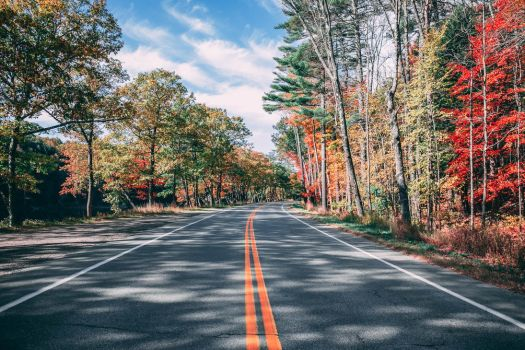 A Maine Road in the Fall by TomBraley