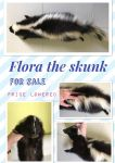SKUNK, PRICE LOWERED AGAIN by Ishtar-Creations
