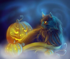 Black Cat Month by Followthepaws