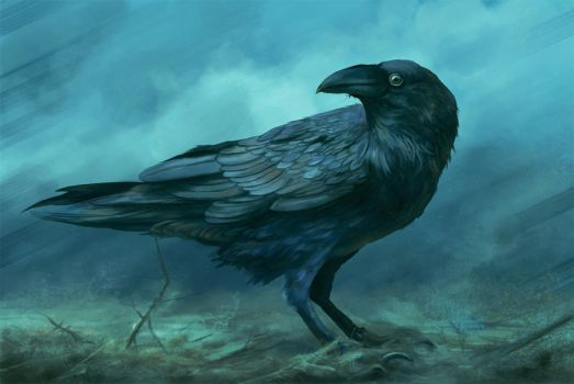 Corvus by DanteCyberMan