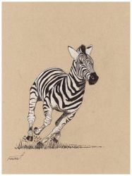 Zebra (Dynamic Form) by fizz1173