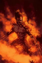 WOLVERINE WEDNESDAY - 45 by reau