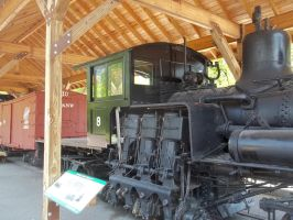 Goodman Shay 9 Cab by PRR8157