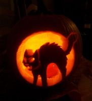 Pumpkin 2013 by cryptated