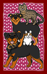Pet Stack by Leonca