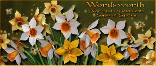Wordsworth for Lisa's Botanicals Signs of Spring by NapalmArsenal