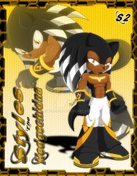 Styles the Hedgechidna by ND0308