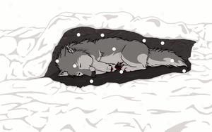 freezing wolf with snow .:C:. by RedSoulWolf13