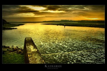 Katharsis by Inebriantia