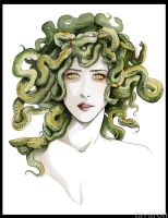 Medusa by tavaron