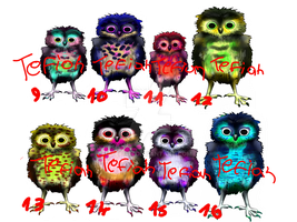 Owlet Adoptable (closed) by Tefian