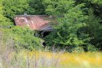 Forgotton Little House - Big Springs Rd by Crystal-Marine