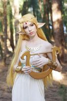 BotW - Princess Zelda XIII by MeganCoffey