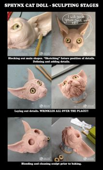 Sphynx Sculpting Stages by LimitlessEndeavours