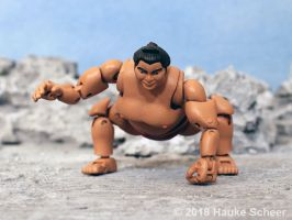 3D printed Sumo action figure pose K by hauke3000