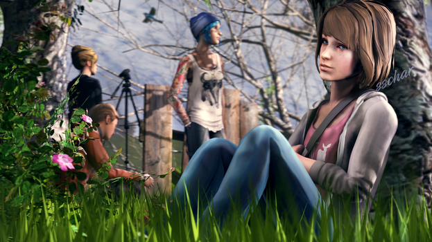 Life Is Strange by SSchar