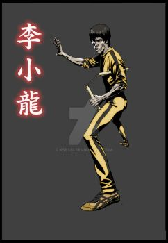 Bruce Lee-13 by kse332