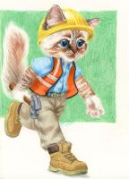 Construction Cat by zarry