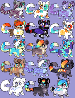 June Adopts 2017 (lowered, open) by Kainaa