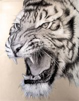 White tiger of Fictician by Pyrra