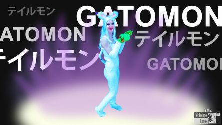 Fun with Photos - Gatomon 01 by MrJechgo