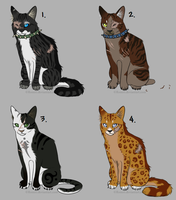Cat adopt set 1 by Evertooth