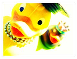 Miss LaDuck and Friend by aural