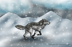 Running in the Snow by Tienala