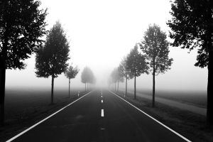 Road in the fog by 55Martin