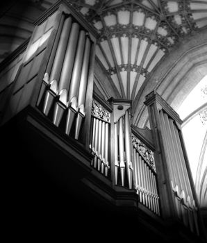 The Organ by YoullNeverGetMeAlive