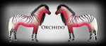 Orchido Ref by Drasayer