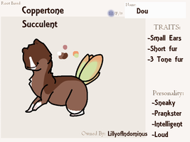 Dou - Root by LillyofIndominus