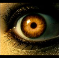 Golden Eye. by deadstarx
