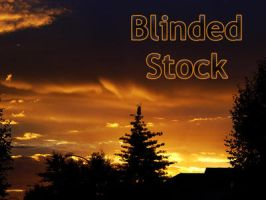 BlessedID by Blinded-Stock