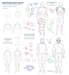 Male Anatomy Tips by TheDamn-ThinGuy